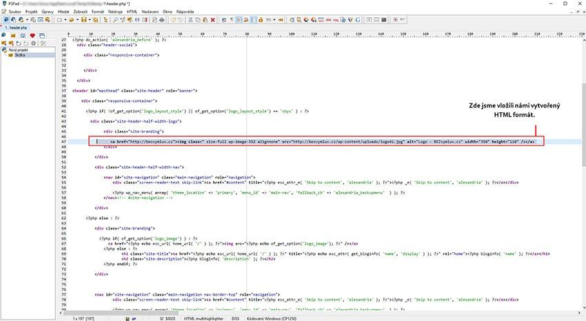 Kde vložit HTML kód pro logo